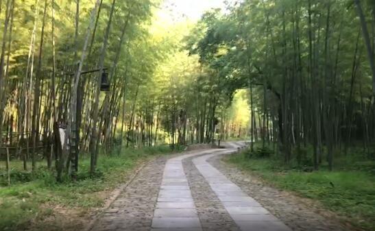 美丽中国长江行丨守护绿水青山 黄公望村打造现实版《富春山居图》