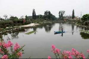 """美丽河湖""""点睛""""乡村振兴 走出产村融合发展新路子"""