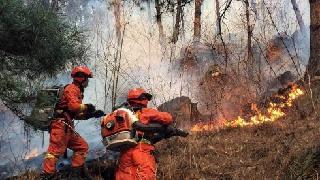 凉山森林火灾牺牲的27名消防官兵和3名地方干群申评烈士
