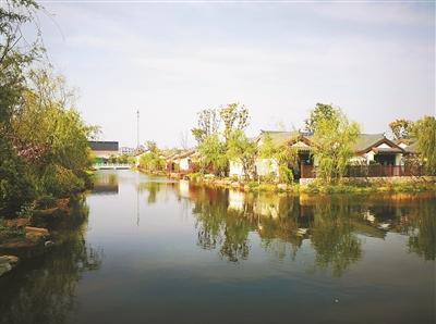 """澥浦: 修复水生态系统 打造""""视觉盛宴"""""""