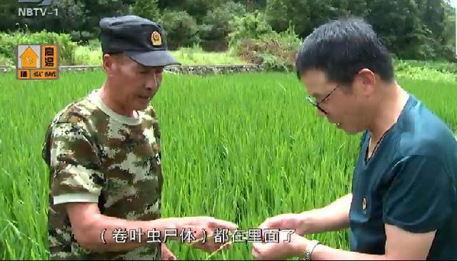 农指员郭华廷:光脚沾泥下田地 助农增收奔小康