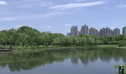 """河道水质提标 按下城市""""美颜键"""""""