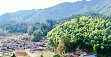 福建三明:改革护绿色 林业富乡农