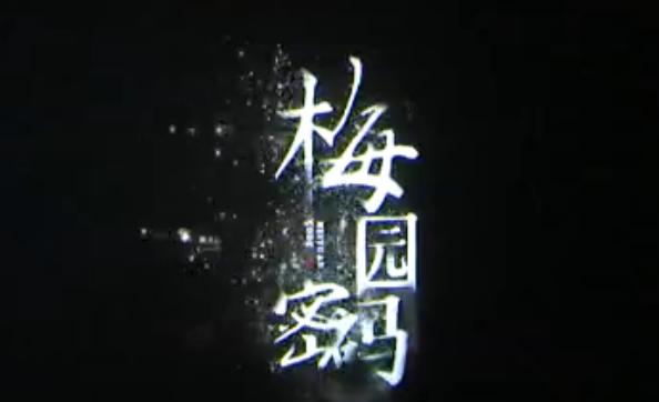学党史 悟思想 办实事 开新局 《梅园密码》昨晚首映
