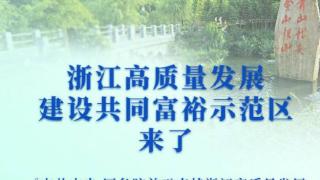 中共中央、国务院发布关于支持浙江高质量发展建设共同富裕示范区的意见