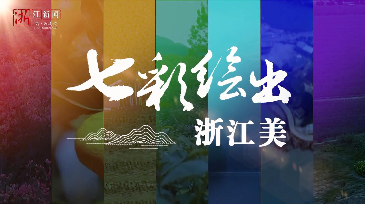 """共同富裕看浙里丨领略美丽浙江的""""诗与远方"""":七彩绘出浙江美"""