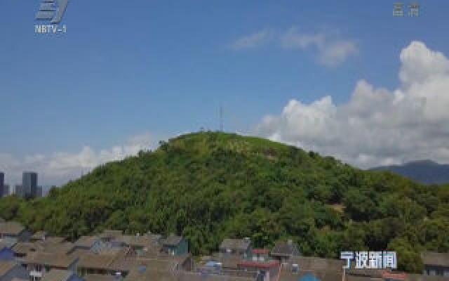 (老兵新传)张志岳:为民谋福祉的村支书