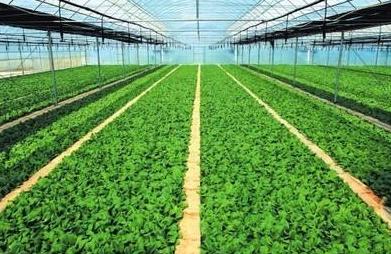 一季度农业生产基本稳定 工业生产增势喜人