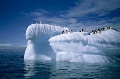 提升应对气候变化能力的具体措施