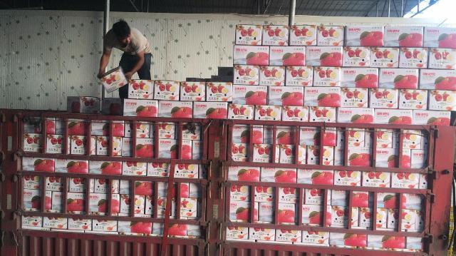 2000吨凉山州盐源苹果来了!鄞州挂职干部助力开启东西部消费协作市场化之路