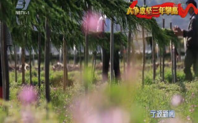 (城乡争优 蝶变样板)象山:218公里滨海绿道串联全域大花园