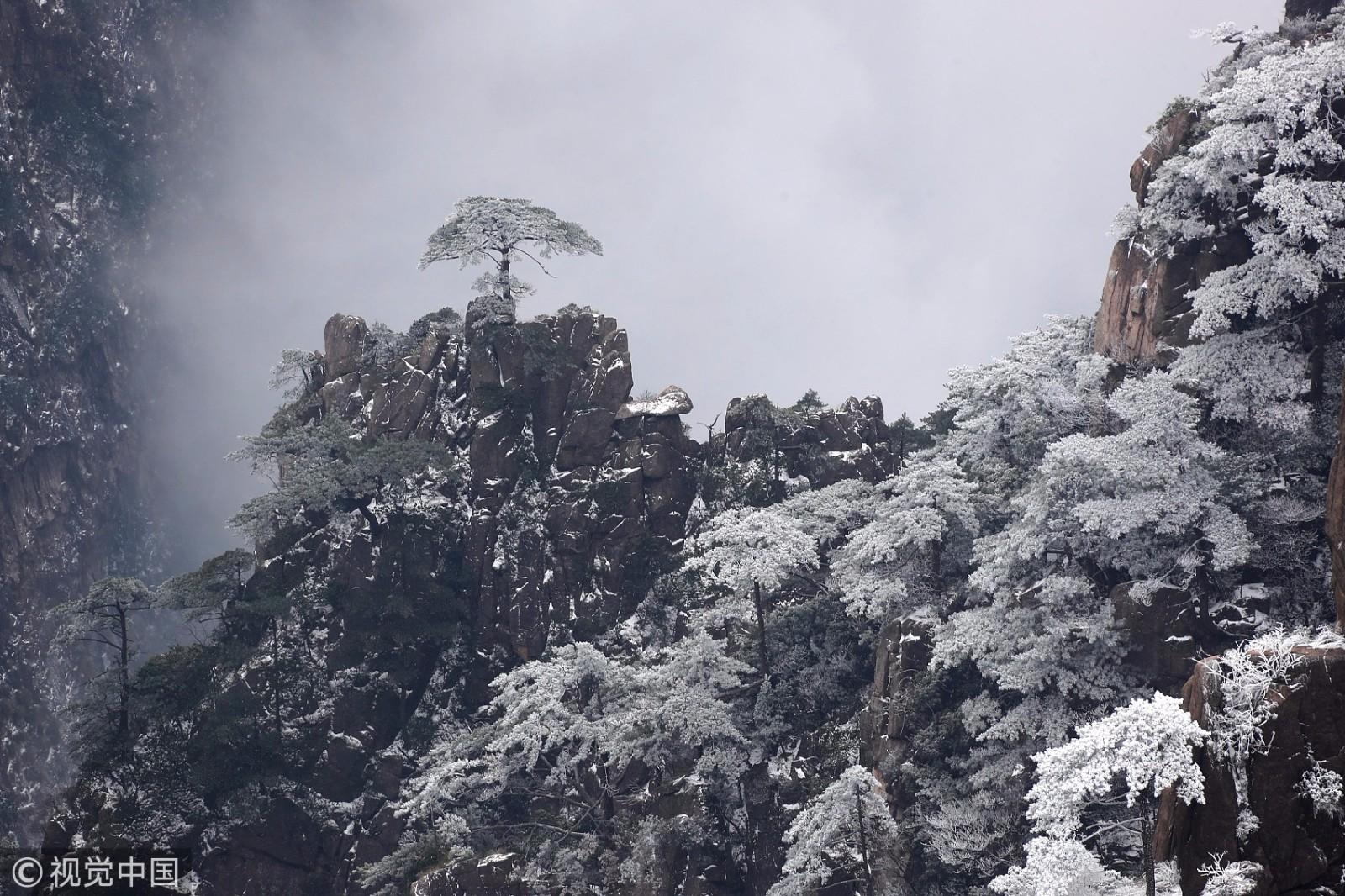 八百里黄山银装素裹,皑皑白雪与奇松怪石交相辉映,美不胜收.