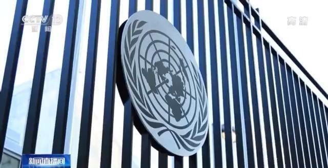 奋斗百年路 启航新征程丨中华人民共和国恢复在联合国的合法席位